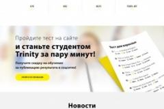 Glavnaya-stranitsa-Trinity-Centre-variant-3-pri-navedenii